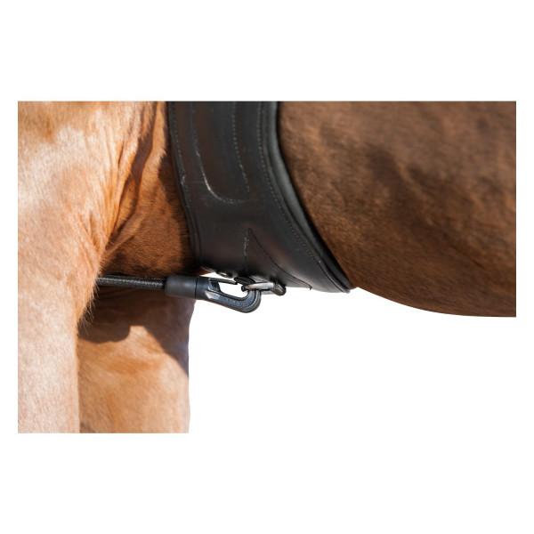 Шамбон купить в интернет магазине конной амуниции